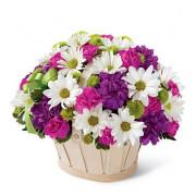 blooming_bounty_2
